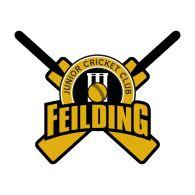Feilding Cricket-1